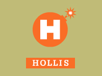 "Hollis Brand - flash development - <a href=""http://www.studioactiv8.com/p_hollis"" target=""_blank"">view site</a>"