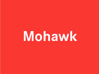 "Mohawk Paper Say More - flash animation + development - <a href=""http://www.studioactiv8.com/p_mohawk/"" target=""_blank"">view site</a>"