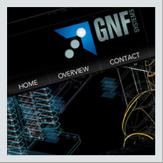 GNF Systems