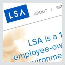 LSA Consulting